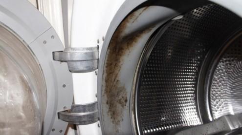 Причина запаха в стиральной машине